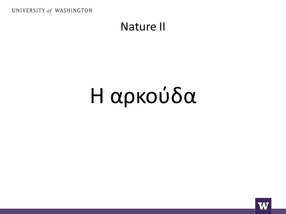 Nature II Η αρκούδα