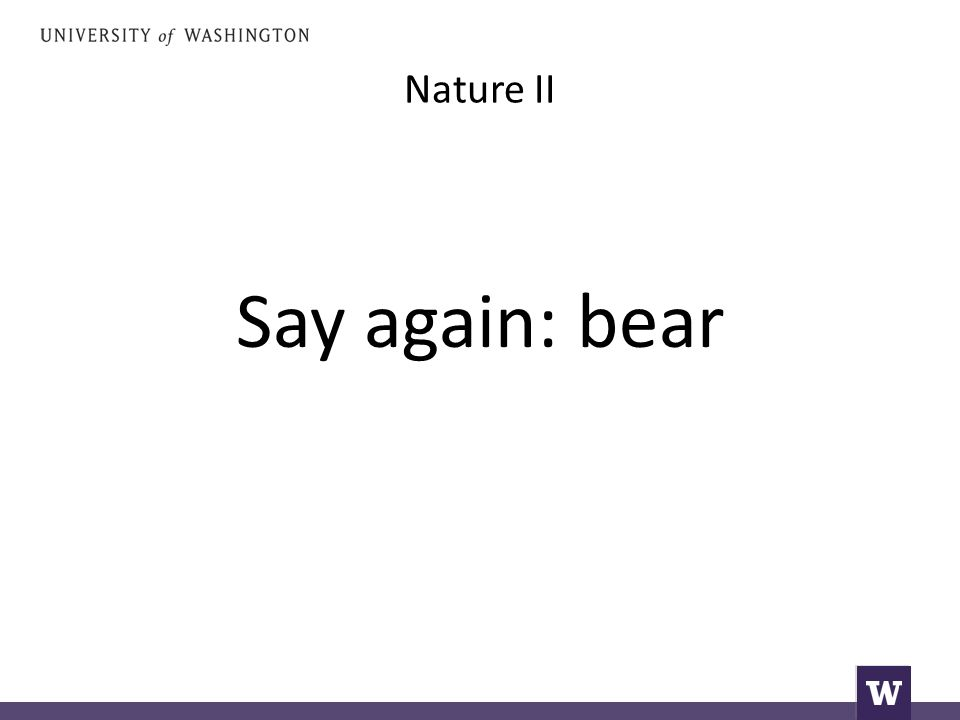 Nature II Say again: bear