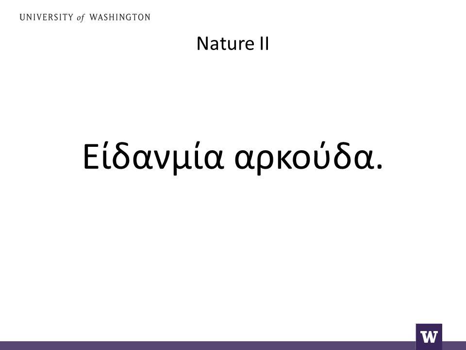 Nature II Είδανμία αρκούδα.