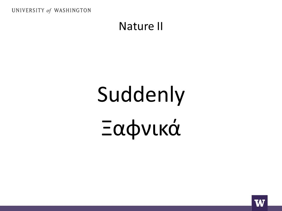 Nature II Say: suddenly