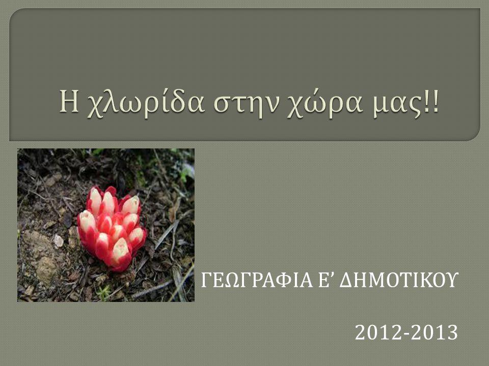 ΓΕΩΓΡΑΦΙΑ Ε ' ΔΗΜΟΤΙΚΟΥ 2012-2013
