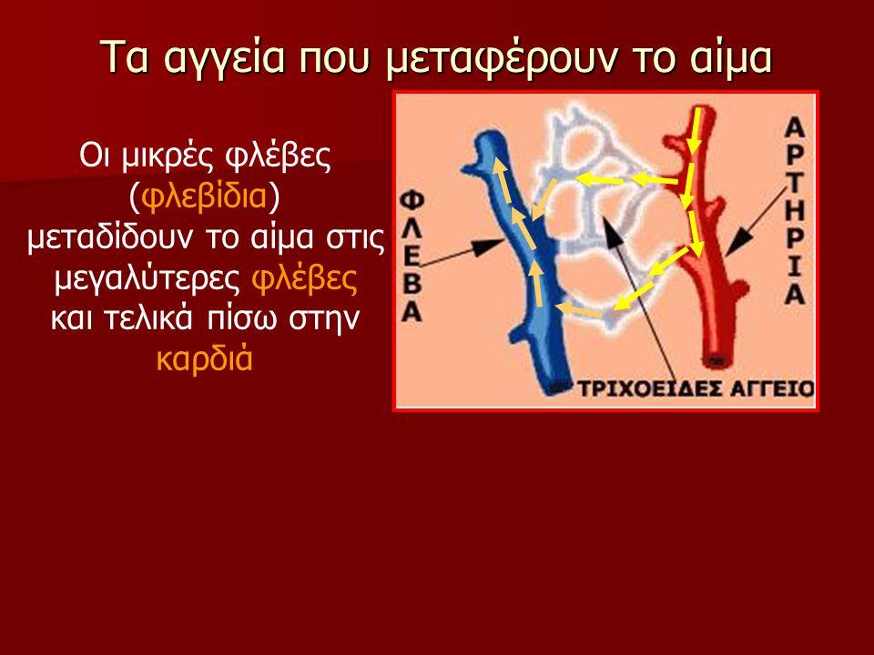 Τα αγγεία που μεταφέρουν το αίμα Οι μικρές φλέβες (φλεβίδια) μεταδίδουν το αίμα στις μεγαλύτερες φλέβες και τελικά πίσω στην καρδιά