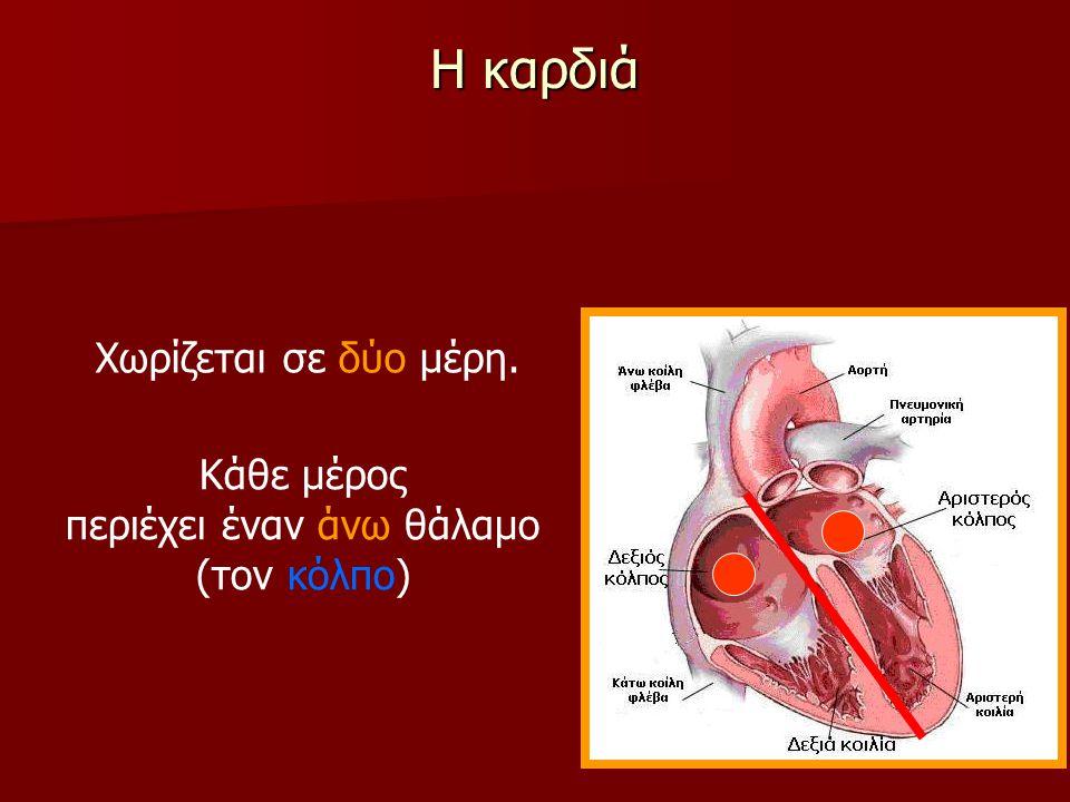 Τα αγγεία που μεταφέρουν το αίμα Επίσης, το αίμα απορροφάει από τους ιστούς του σώματος διοξείδιο του άνθρακα