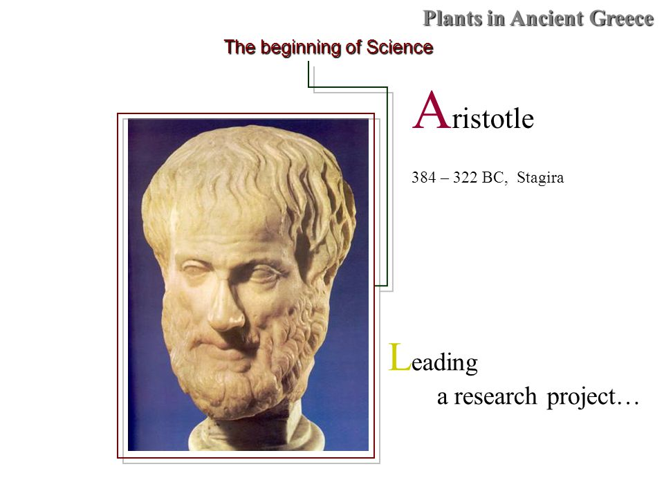 Plants in Ancient Greece A ristotle 384 – 322 BC, Stagira The beginning of Science L eading a research project…