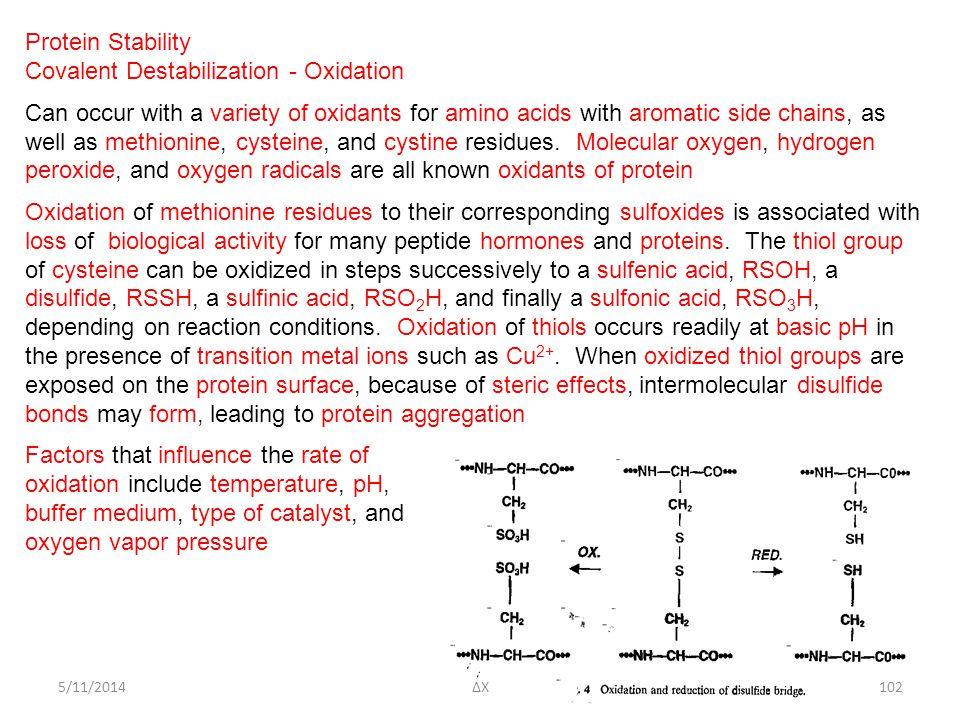 5/11/2014 Protein Stability Covalent Destabilization - Oxidation Can occur with a variety of oxidants for amino acids with aromatic side chains, as well as methionine, cysteine, and cystine residues.