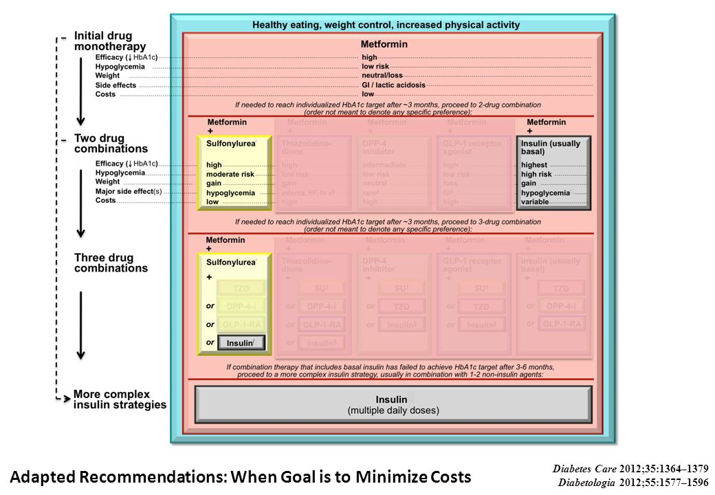 Adapted Recommendations: When Goal is to Minimize Costs Diabetes Care 2012;35:1364–1379 Diabetologia 2012;55:1577–1596