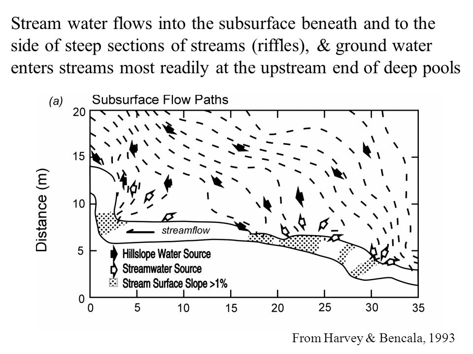 From Harvey & Bencala, 1993 Stream water flows into the subsurface beneath and to the side of steep sections of streams (riffles), & ground water enters streams most readily at the upstream end of deep pools