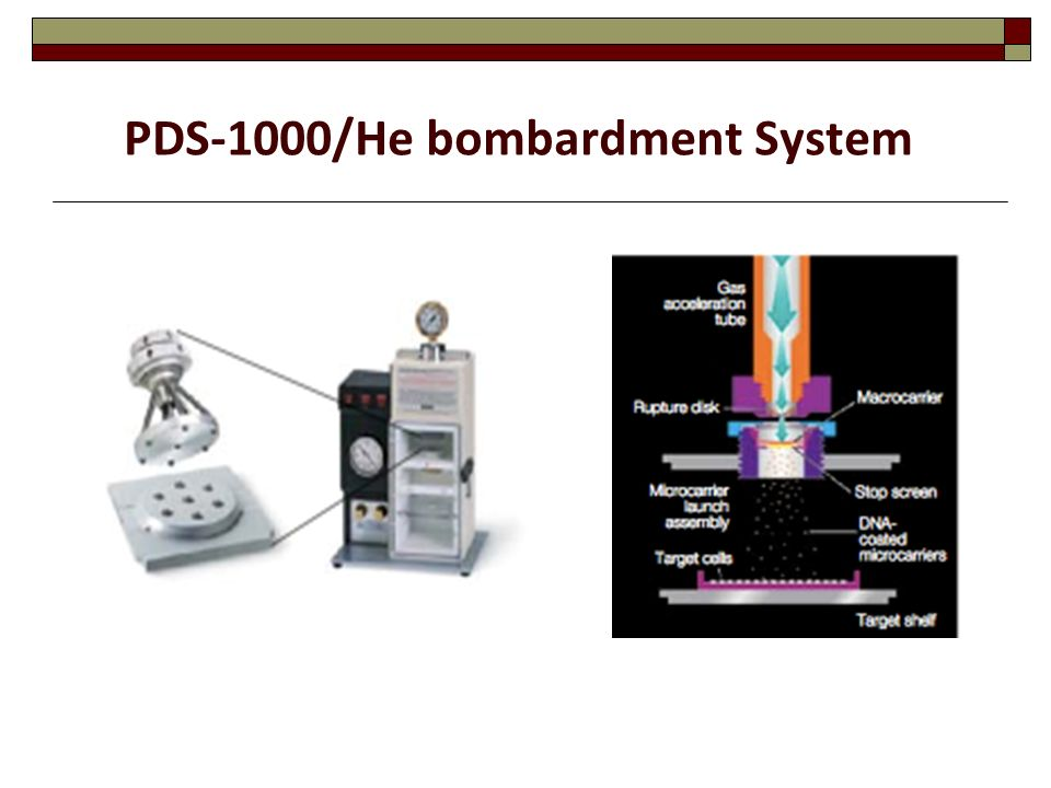 PDS-1000/He bombardment System