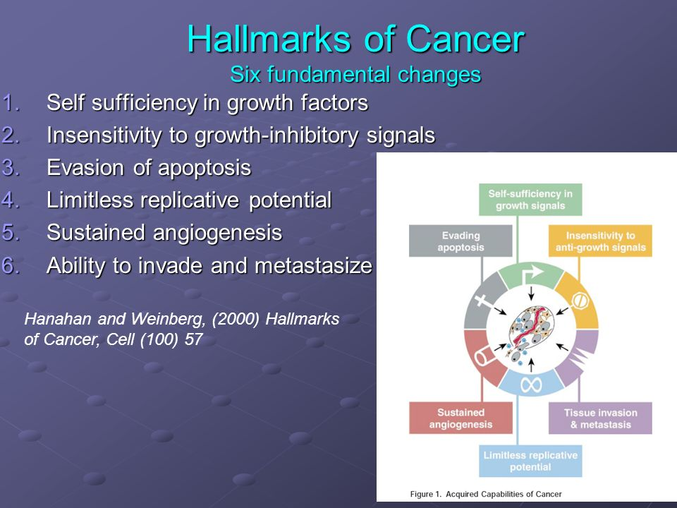 Hallmarks of Cancer Six fundamental changes 1.Self sufficiency in growth factors 2.Insensitivity to growth-inhibitory signals 3.Evasion of apoptosis 4.Limitless replicative potential 5.Sustained angiogenesis 6.Ability to invade and metastasize Hanahan and Weinberg, (2000) Hallmarks of Cancer, Cell (100) 57