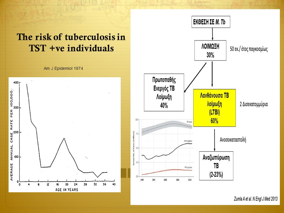 The risk of tuberculosis in TST +ve individuals Am J Epidemiol 1974