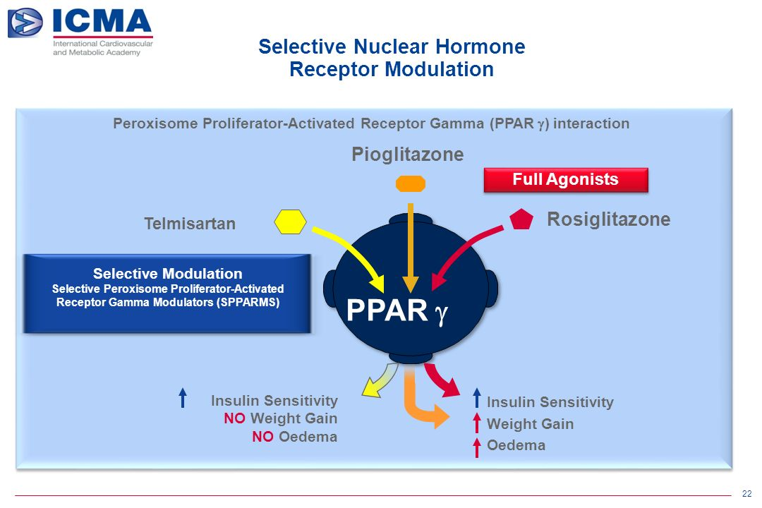 22 Peroxisome Proliferator-Activated Receptor Gamma (PPAR  ) interaction Selective Nuclear Hormone Receptor Modulation Rosiglitazone Pioglitazone PPAR  Full Agonists Insulin Sensitivity NO Weight Gain NO Oedema Insulin Sensitivity Weight Gain Oedema Telmisartan Selective Modulation Selective Peroxisome Proliferator-Activated Receptor Gamma Modulators (SPPARMS)